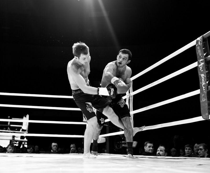 Boxingphoto preview