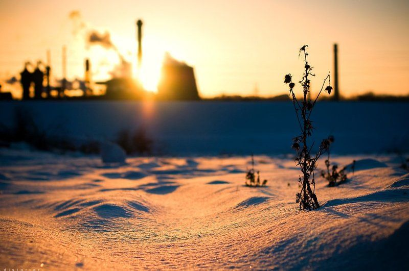 закат, зима, природа, снег The Endphoto preview