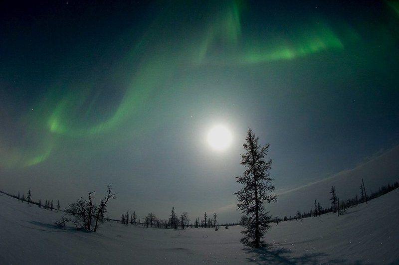 aurora borealis,  северное сияние,   ночной пейзаж ,  север, Aurora Borealis 2012#1photo preview