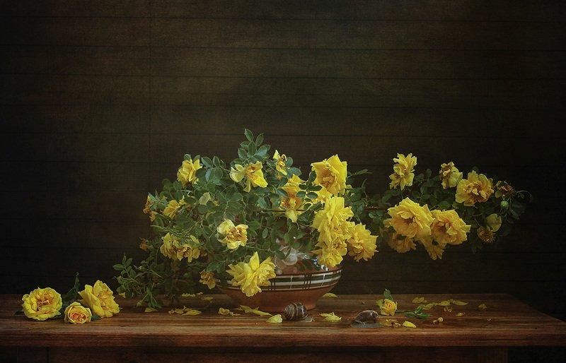 желтые розы, ваза, цветы Желтые розы.photo preview