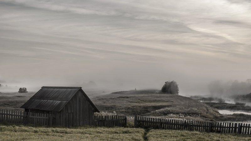 вологодская область, река вожега, деревня коневка,утро, туман Утро туманноеphoto preview