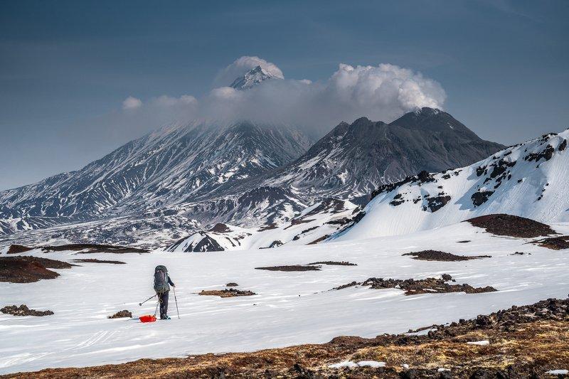 Камчатка, Камень, Безымянный, вулканы, Ключевская На излёте зимыphoto preview