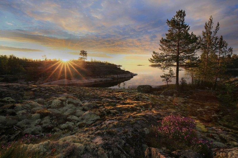 карелия, ладожские шхеры, ладога, рассвет Утро на Ладожском озереphoto preview