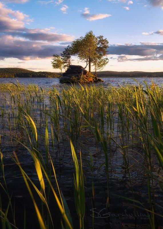 Таватуй, отсров, бонсай, озеро, Средний Урал, Урал Дрейфующий островphoto preview