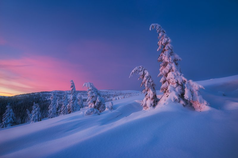 Daybreak фото превью