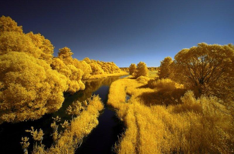 infrared,ик-фото,инфракрасное фото, инфракрасная фотография, пейзаж, лето Островок.photo preview