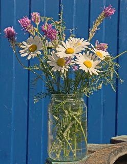 Букет из садово-полевых цветов.