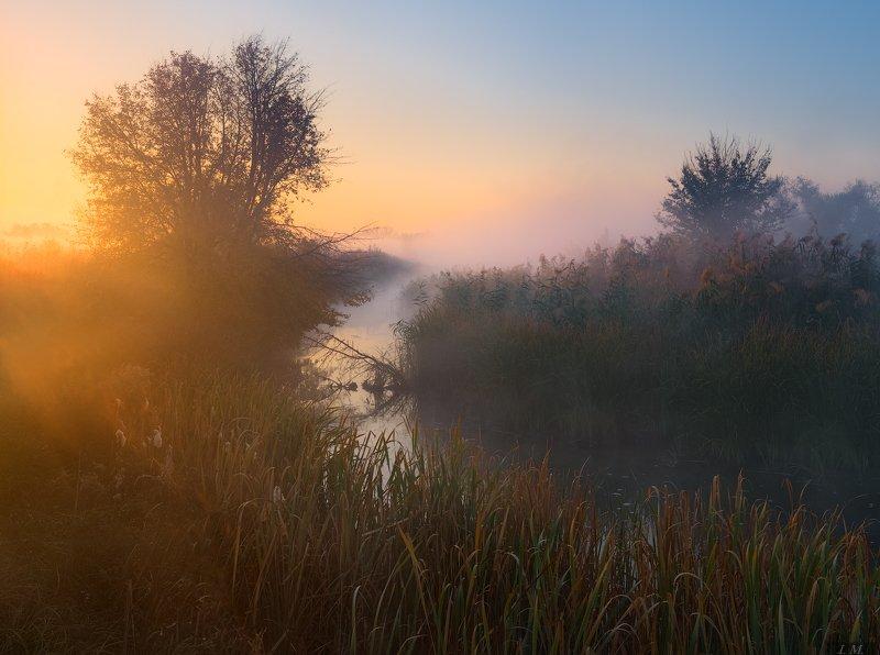 утро, осень, рассвет, туман, пейзаж, речка, цвета, свет, луг, foggy, morning, sunrise, misty, autumn, fall, light, colors, fog, river, meadows, landscape в золотое утро ..photo preview