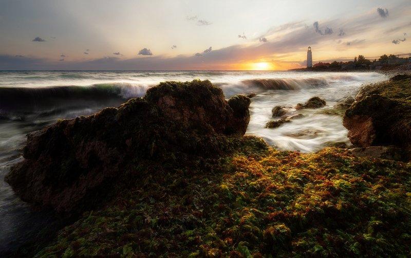 море,пейзаж,крым,закат,маяк,волны,водоросли \