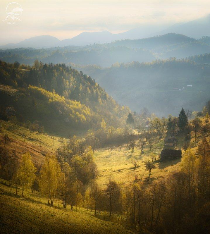 пейзаж, природа, холмы, дома, румыния Среди холмов фото превью