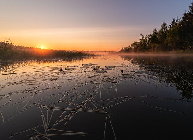 Рассвет,природа,солнце,пруд Новый день,подарит новый рассветphoto preview