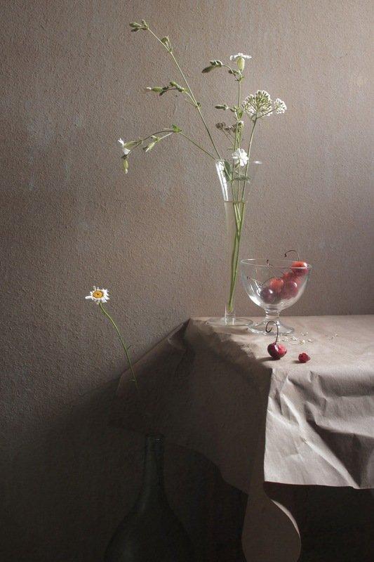 летние зарисовки Кислая ягода белые цветыphoto preview