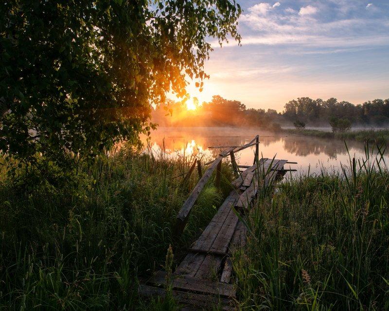 Рассвет, природа, солнце, мостик, Вятка, Россия Молочно золотой рассветphoto preview