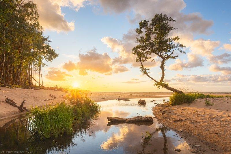 природа, пейзаж, море, закат, sunset, landscape, nature, sea Устье Забавыphoto preview