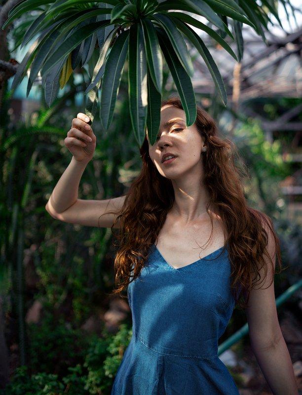 сад, портет, тропики, украина, киев, ботанический, девушка, модель, свет, тени, взгляд, солнце, жара Прячась от светаphoto preview