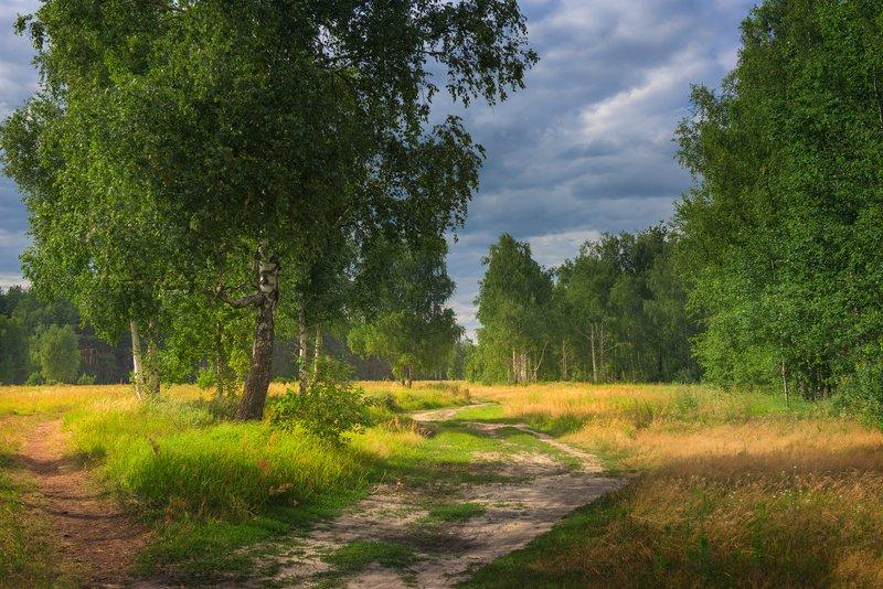 лето июль вечер Нет суеты, лишь тишина в своей доступной простотеphoto preview