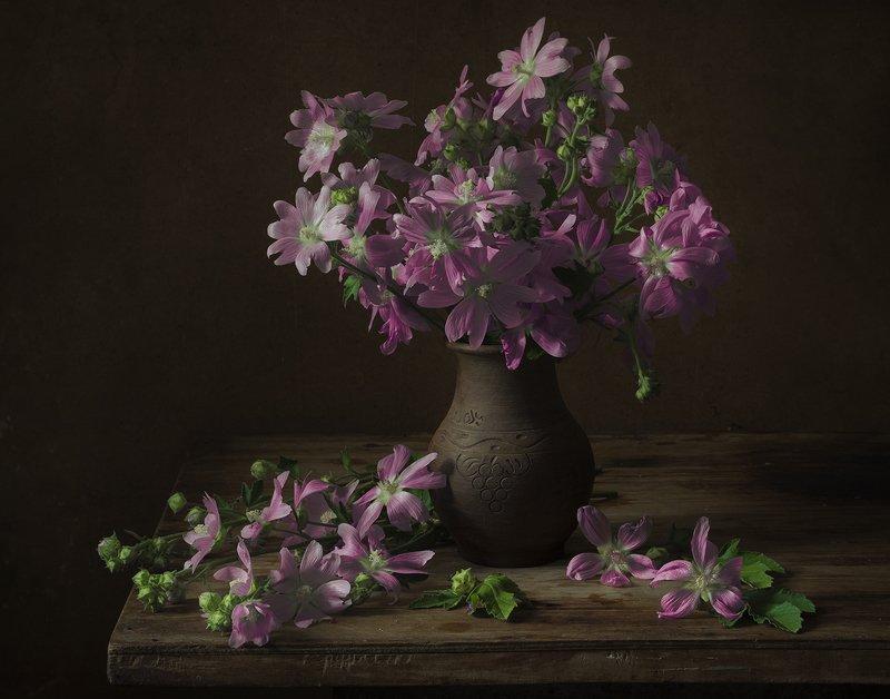 натюрморт,цветы,букет Летоphoto preview