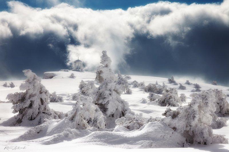 крым, зима, роман любимский Зимний садphoto preview