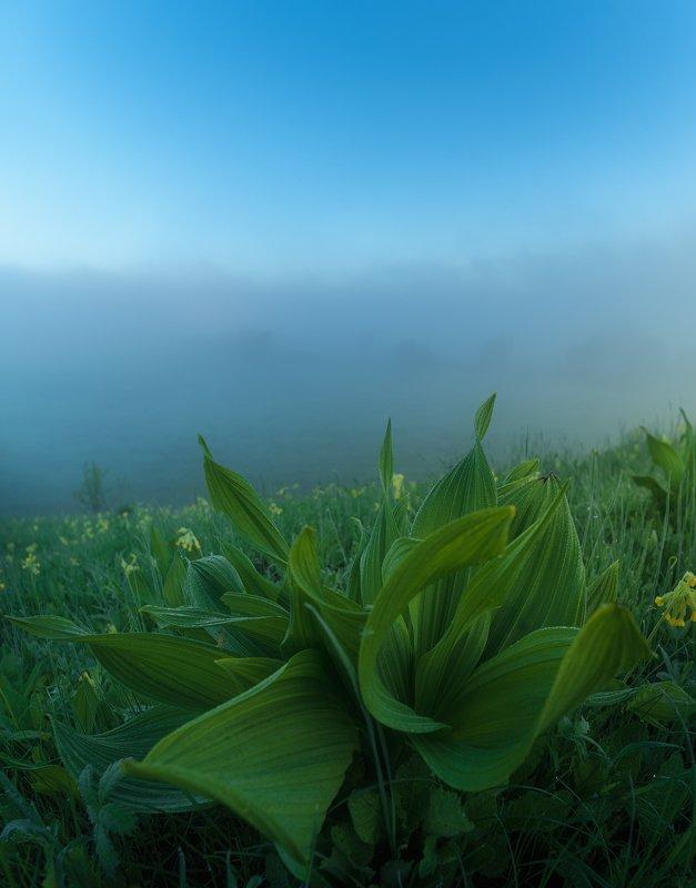 утро, россия, весна, рассвет, одоев На краю...photo preview