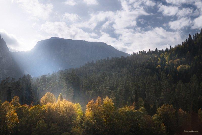 небо, горы, осень, абхазия, лес, деревья, небо Свет с небесphoto preview