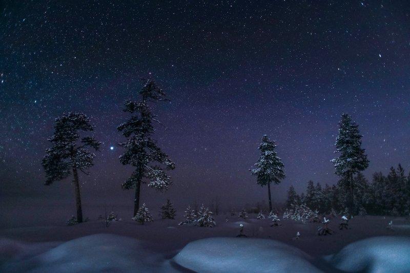 Югра, Север, Ночь, зима, Звезды, красиво, Звездная ночьphoto preview