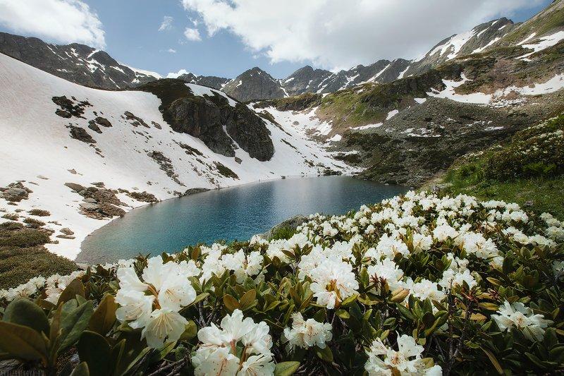 россия, природа, горы, лето, озеро, кавказ, пейзаж, путешествие Дуккинское озероphoto preview