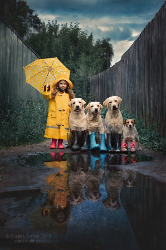дождь, собака, сапоги, дружба, девочка, плащ, зонт, лето, лучшие друзья, веселая компания, лужи, осень, деревня, лабрадор, дети, погода Что мне снег, что мне зной...photo preview
