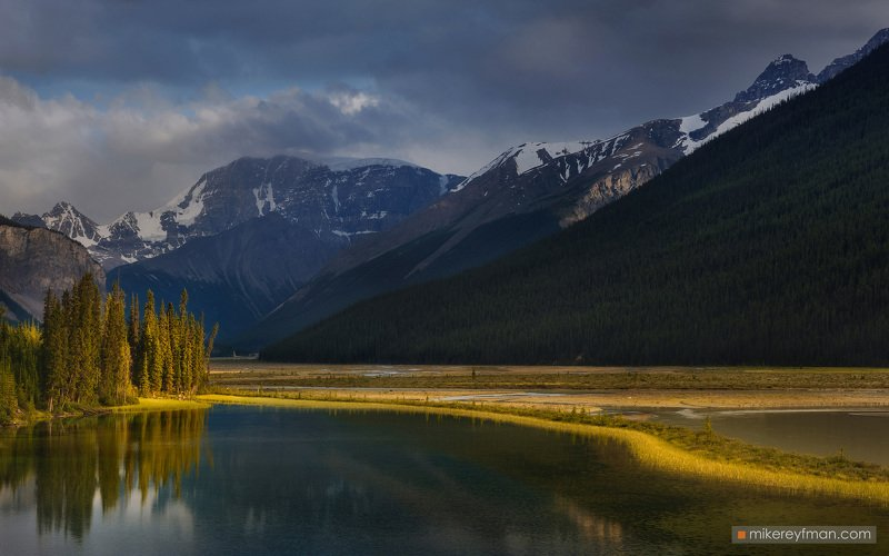 canada, rockies, jasper, athabasca, river, icefields, parkway, alberta Старицаphoto preview