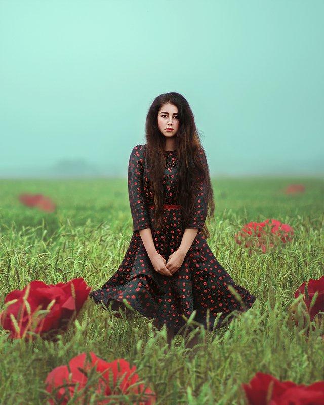 портрет, туман, рассвет, цветы, поле, пшеница, красный, portrait, sunrise, fog, field, summer, woman photo preview