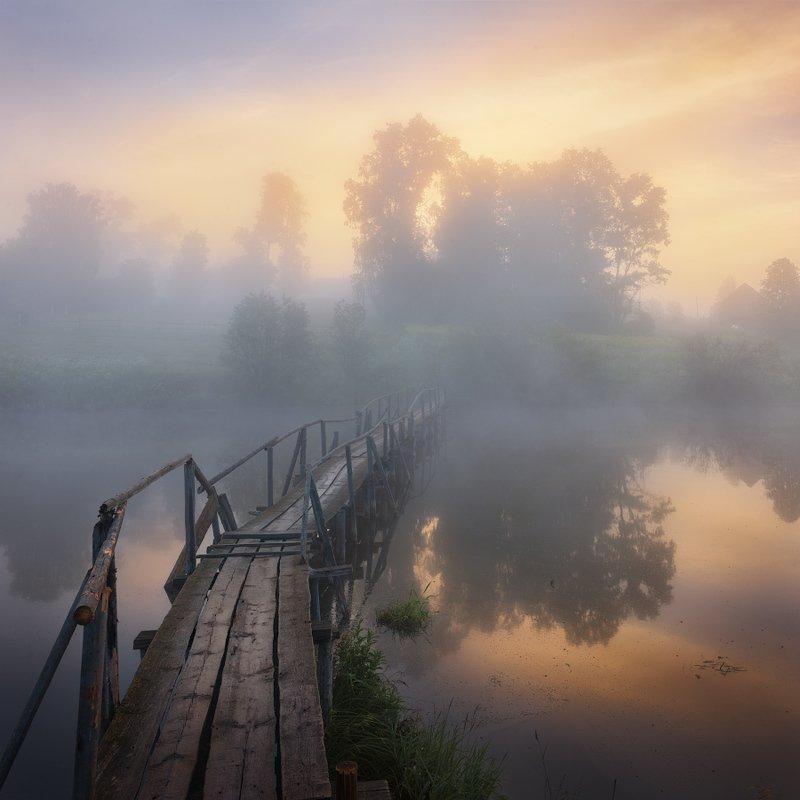 туман, лето, мост Туманная перспективаphoto preview