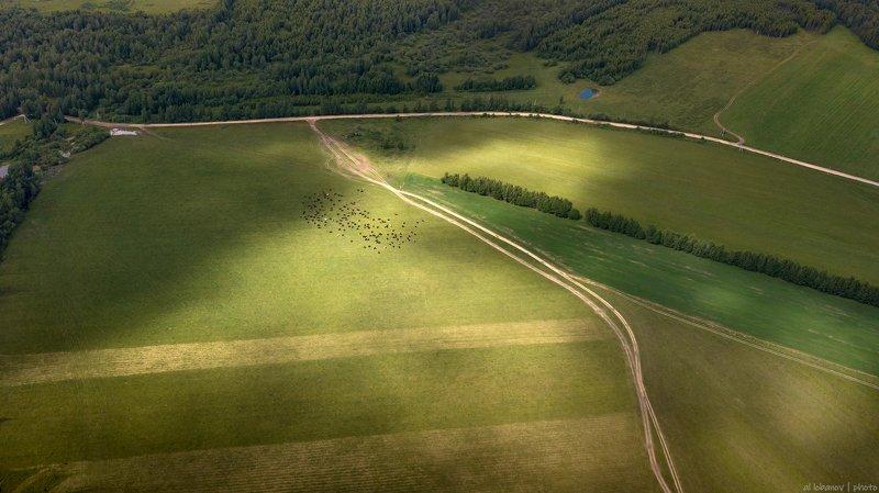 ярославская область Cельская местностьphoto preview