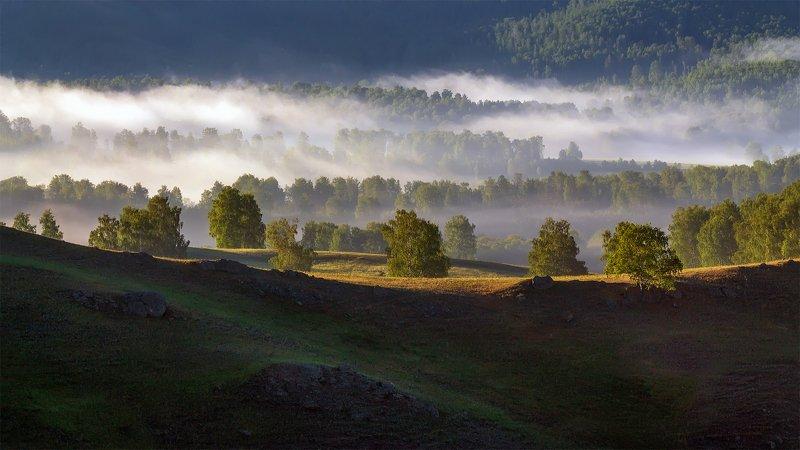 утро, рассвет, восход, туман, лучи Туманное утроphoto preview