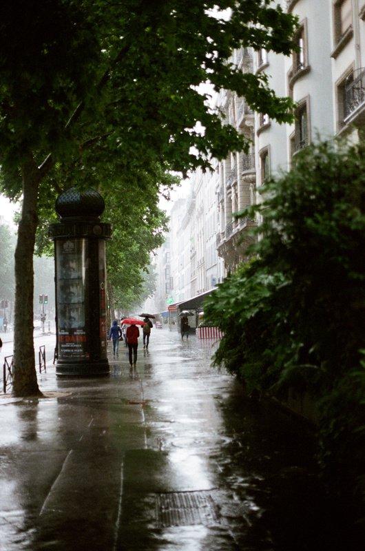 Дождиphoto preview