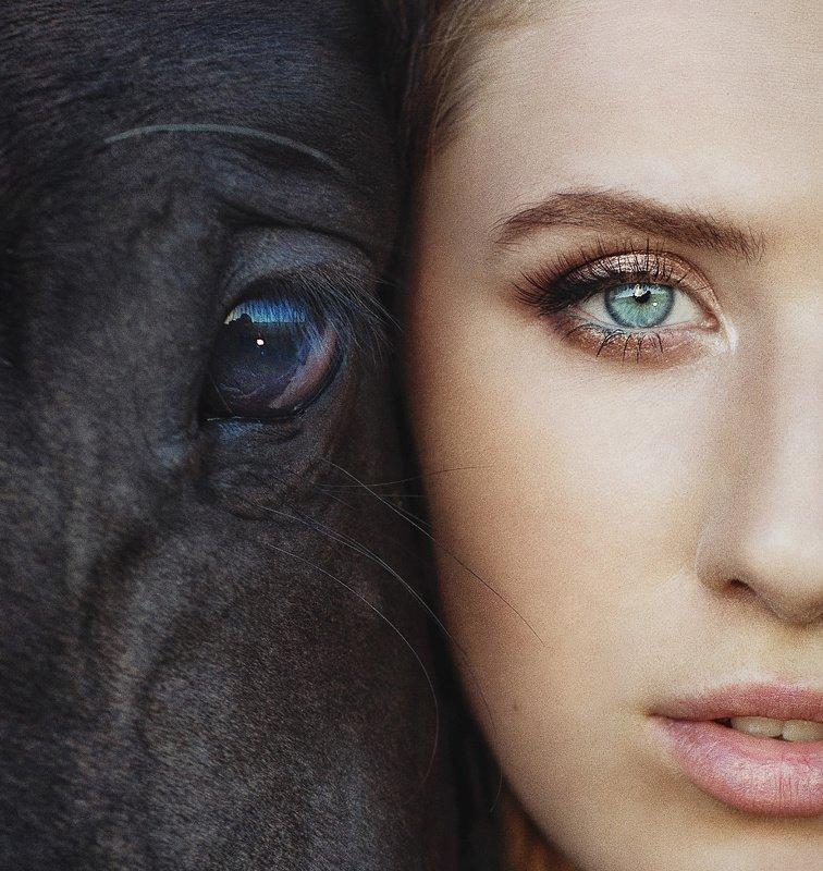 девушка, женский портрет, лошадь,  портрет, взгляд, глаза ***photo preview