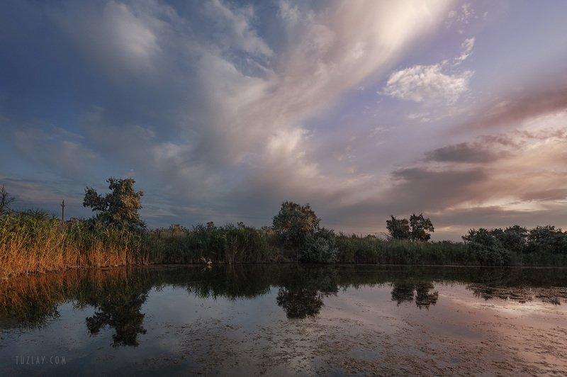водоем, земля таманская, темрюкский район, камыши Таманский июльский вечерок над камышамиphoto preview