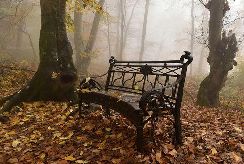 Вспоминая туманную осень..