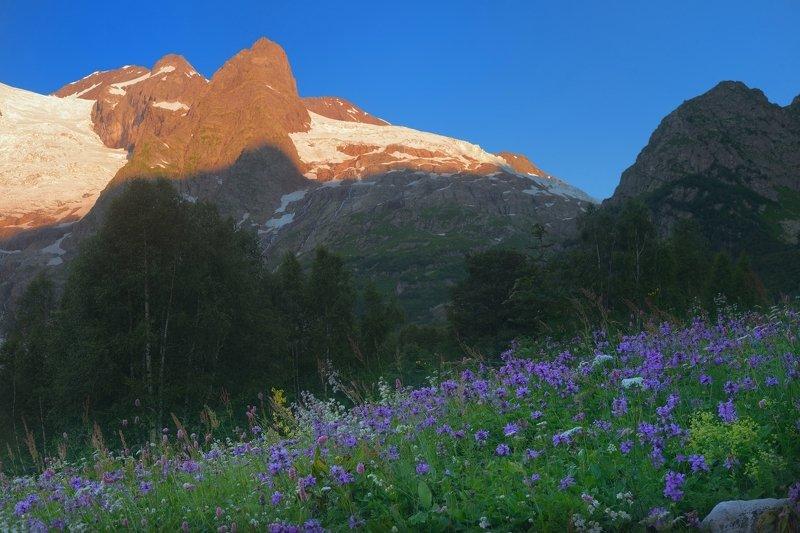 горы лето кавказ алибек рассвет Цветочная полянаphoto preview