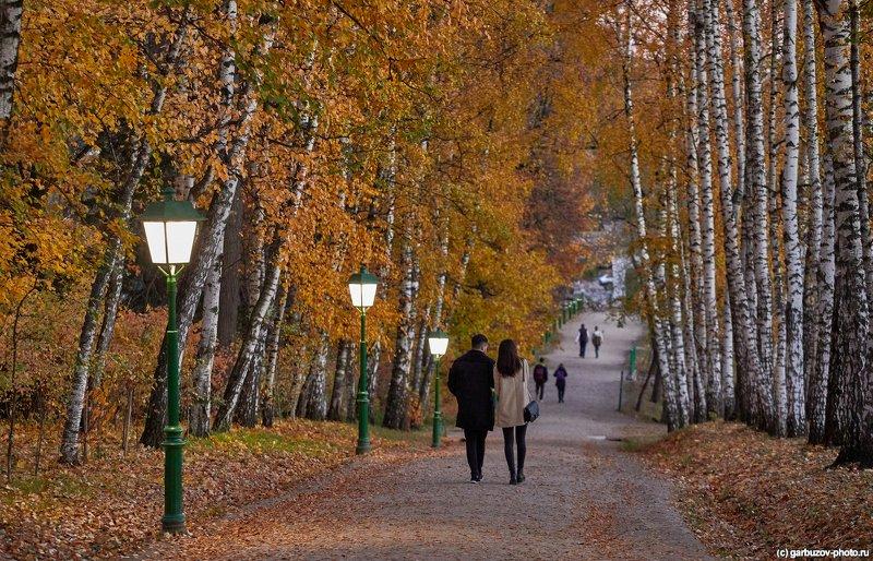 Осень в Ясной Полянеphoto preview