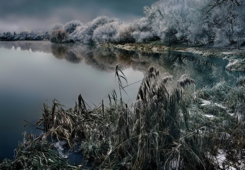 осень, пейзаж Заиневевшая и хмурейшая ноябрина...photo preview