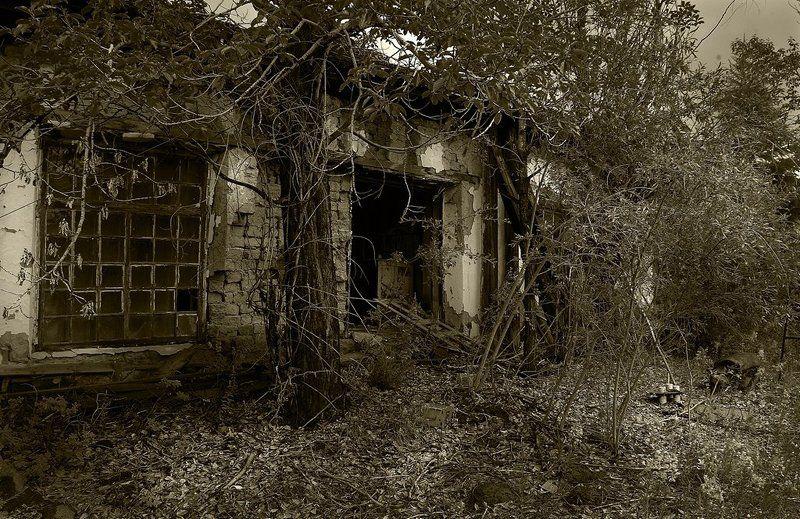 пос.адыгалах Адыгалах 2009, продолжениеphoto preview
