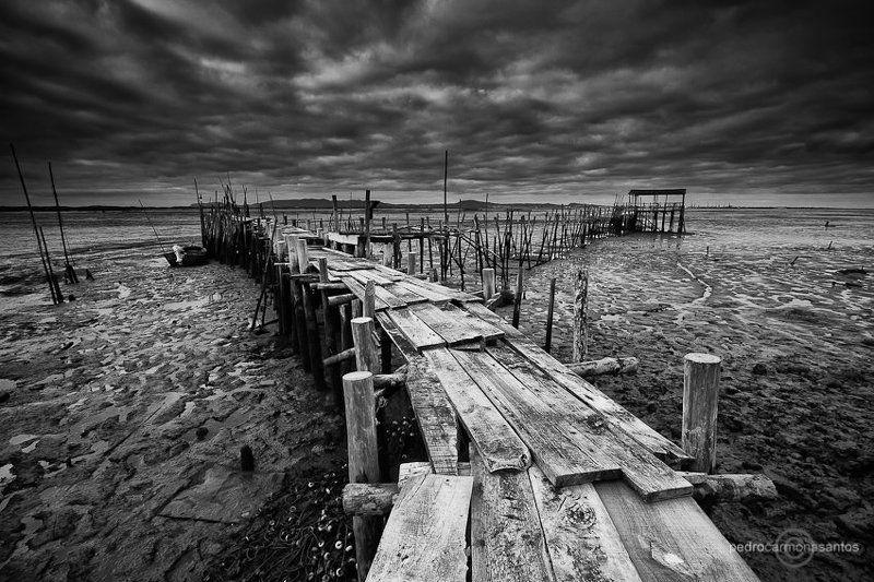 carrasqueira, setubal, empy tide Emptiness (пустота)photo preview