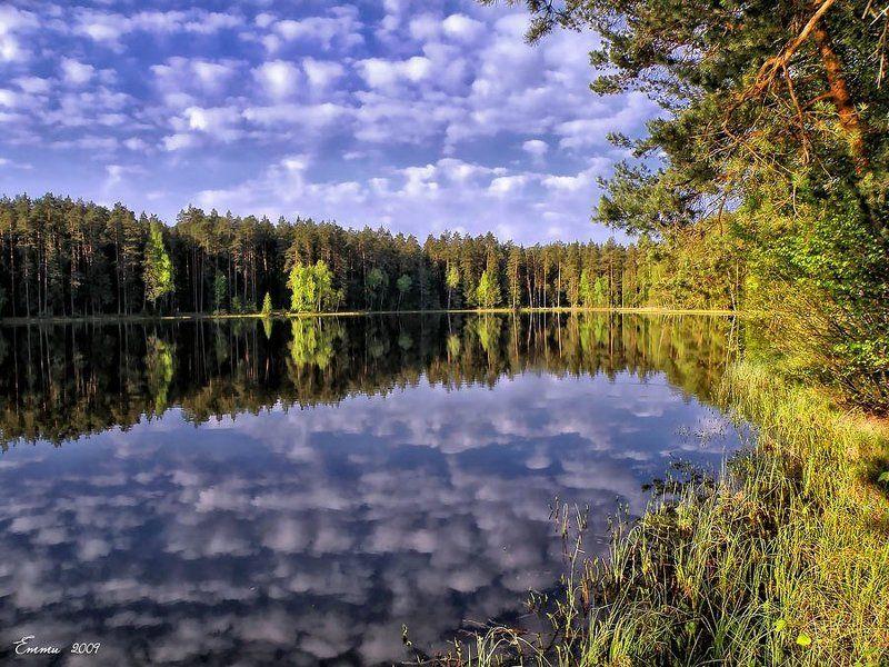 природа, утро, озеро, весна, тишина, подмосковье Синее озеро.photo preview