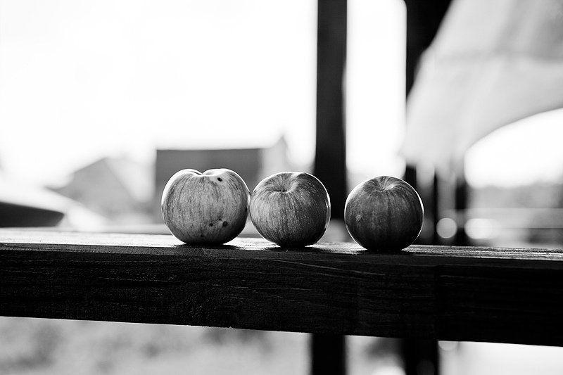 яблоки *photo preview
