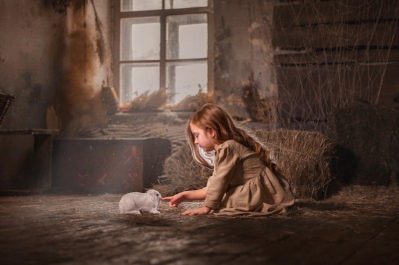 сено дети кролики  Новые друзья/ New friendphoto preview