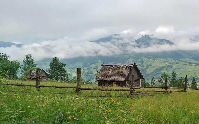 карпаты, лето, ясиня, горы, туман, утро Вершины ещё в облакахphoto preview