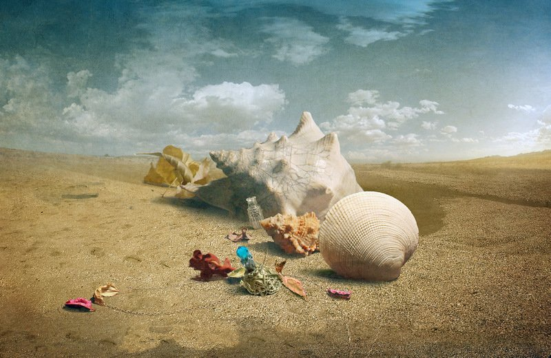 На странных берегах.photo preview