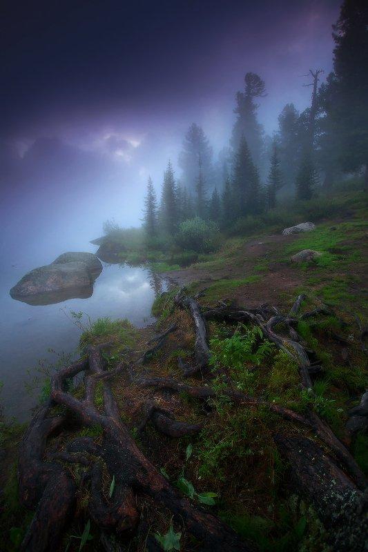 ергаки, горы, саяны, западныйсаян, сибирь, фототур Туманы Светлого фото превью