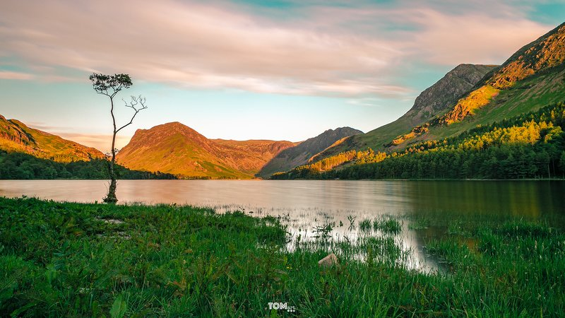 lonely tree sunset england golden goldenhour mountains greenwater lakedistrict england uk lakes sky clouds longexposure  \
