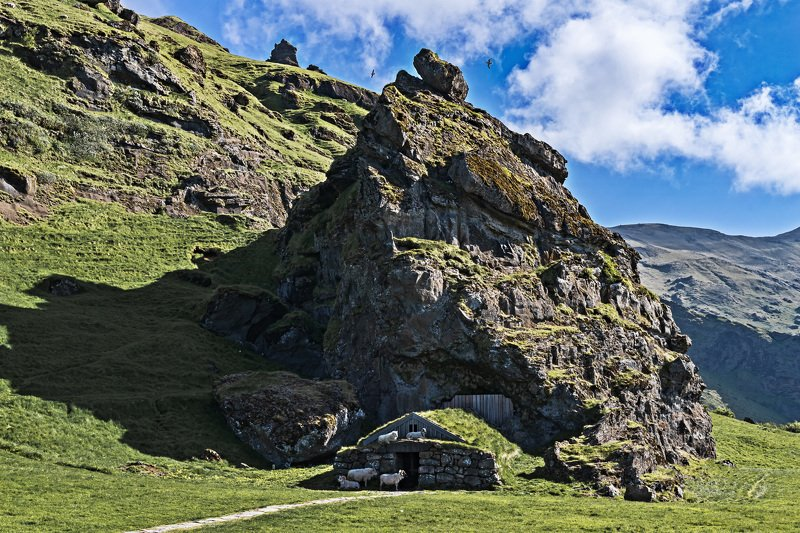 пейзаж, лето, природа, исландия, ладшафт Овцы на привалеphoto preview