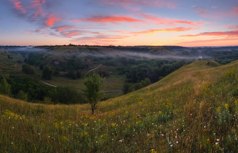лето, утро, рассвет, облака, краски, туман, долина, холмы, панорама, пейзаж, дерево, sunrise, summer, morning, fog, misty, valley, hills, tree, clouds, colors, light, red, panorama, landscape, countryside, sky, foggy ***photo preview